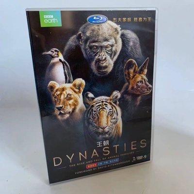 BBC高分紀錄片 王朝 Dynasties 高清DVD碟片英語原聲中字3碟 精美盒裝