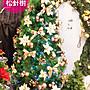 聖誕樹 8尺松針樹成品,聖誕節/ 聖誕佈置/ 聖...