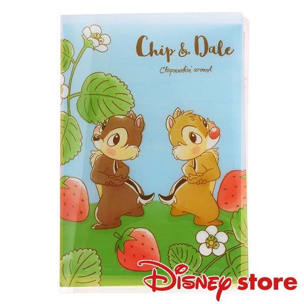 *B Little World * [現貨]東京迪士尼限定商品/奇奇蒂蒂信紙組/花栗鼠/東京連線