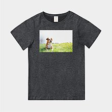 T365 MIT 親子裝 童裝 情侶裝 T恤 T-shirt 短T 狗 DOG 汪星人 草原 Grassland 毛小孩