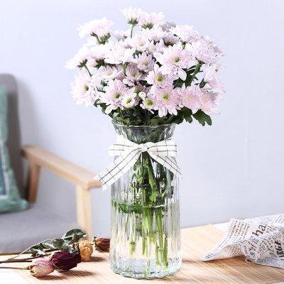 歐式花瓶歐式玻璃花瓶干花富貴竹插花透明玻璃花瓶彩色鮮花瓶客廳花瓶擺件