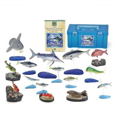 日本 COLORATA 魚 扭蛋 set (海水魚)