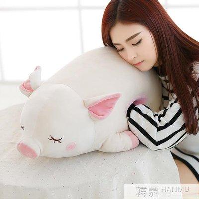 豬娃娃公仔暖手抱枕插手睡覺抱玩偶可愛懶人毛絨玩具女圣誕節禮物  YTL
