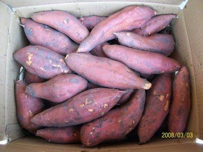 產地直銷-大城鄉地瓜批發-台農66號紅肉地瓜,歡迎來訂購,謝謝!