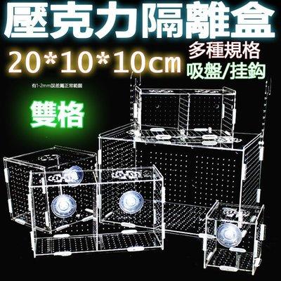雙格20x10x10cm超透亞克力隔離盒【掛勾/吸盤款 任選】壓克力繁殖盒、壓克力隔離盒、壓克力拍照盒孵化魚缸可參考