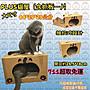 711超取免運 大款plus貓屋含專用抓板$339 紙創無限 耐抓 貓抓板 貓窩 睡窩 貓咪