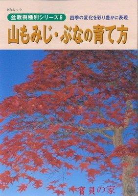 寶貝の家~日本近代出版 山毛櫸.楓(槭)的培育法