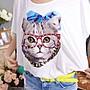 *韓國連線【100%正韓 復古亮片眼鏡喵咪T恤】韓設計師款*LaCoLin BEST 2色(現貨)