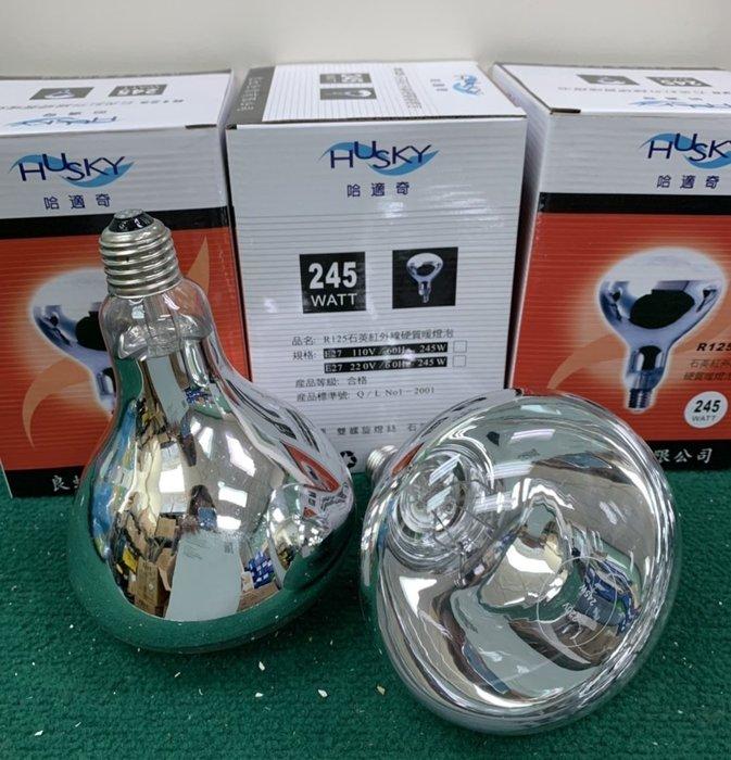 《101衛浴精品》HUSKY 哈適奇 GH-288專用 R125 石英 紅外線 硬質 暖燈泡 245W【免運費】