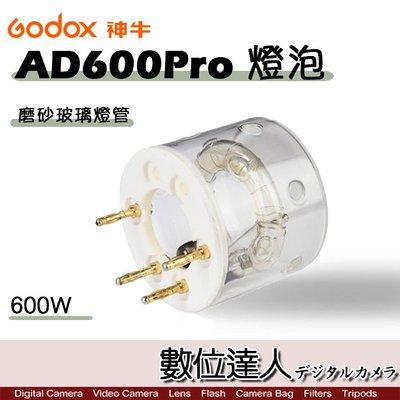 【數位達人】Godox 神牛 AD600Pro 燈泡 燈管 600W 磨砂玻璃燈管 AD600ProFT / 外拍燈