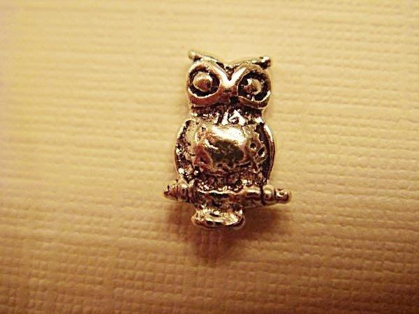 大降價!全新美國 925純銀 Sterling Silver 貓頭鷹穿式耳環,低價起標無底價!本商品免運費!