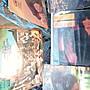 Eagles,Jackson 5,Air-Supply等黑膠唱片數十張