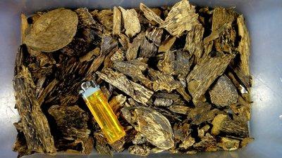 [悅朋香品系列]老古董/芽莊野生沉香.油殼.蟲漏.螺殼/香味濃醇油脂凝厚沁涼/聞香把玩本標10g[芽1]