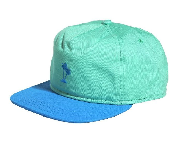{ POISON } VANS SURF PALMEO PLAM STRAPBACK HAT 皮格調節棒球帽 老帽