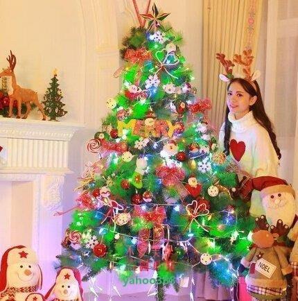 美學192麥瑞1.5米聖誕樹套餐 150cm加密松針裝飾聖誕樹 聖誕節豪華❖57127