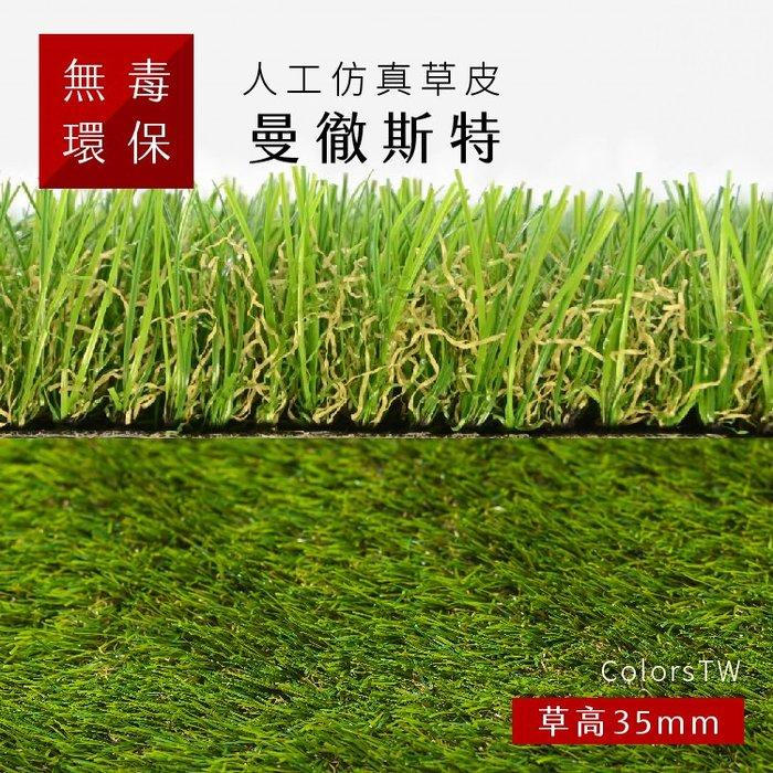 【曼徹斯特】 尺寸1X3m 人工仿真草皮  人工草皮 人造草皮 拼接 園藝 景觀【訂製】