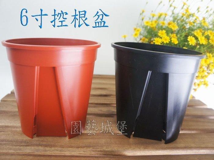 【園藝城堡】《磚紅色下標區》6寸控根盆 栽培盆 花盆 居家園藝