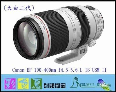 彩色鳥(租鏡頭 鏡頭出租) Canon EF 100-400mm f4.5-5.6L IS II USM 大白二 大白2 台北市