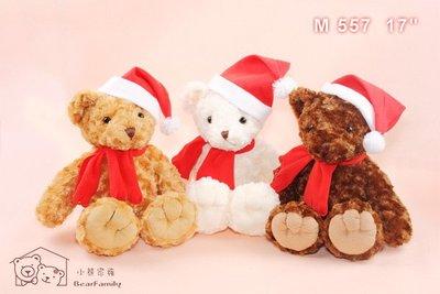 45公分捲毛聖誕泰迪熊 聖誕禮物 耶誕禮品 裝飾小物 可代寫卡片~*小熊家族*~ 泰迪熊專賣店~