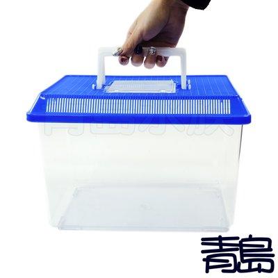 P。。。青島水族。。。CL-102台製-烏龜.兔子.鼠.甲蟲飼育箱 多功能寵物箱 小動物外出箱 寵物飼養容器==大手提箱