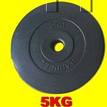 【Fitek 健身網】5公斤槓片*2片☆5KG塑膠槓片*2個☆☆舉重、重量訓練(訓練二頭肌) ㊣台灣製