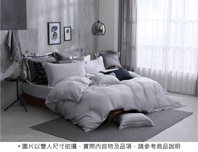【OLIVIA 】DR6000 Mars 銀灰 標準雙人床包冬夏兩用被四件組 銀纖維X天絲™萊賽爾 台灣製