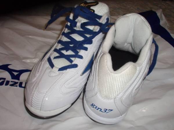 貳拾肆棒球-稀少品日本帶回 日職棒西武獅銀仁朗支給品Mizuno pro 特別訂做釘鞋/28.25 cm