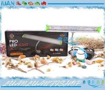 【~魚店亂亂賣~】PRO-LED-N-R25台灣UP雅柏3C彩色螢光薄型蛇管LED夾燈25cm(增豔燈)
