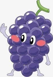 【果之蔬/鄒頌】每周水果.禮盒水果.用品