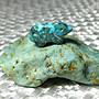 【Texture & Nobleness 低調與奢華】寶石雕件&原礦 綠松石雕件&綠松石原礦-熊霸天下