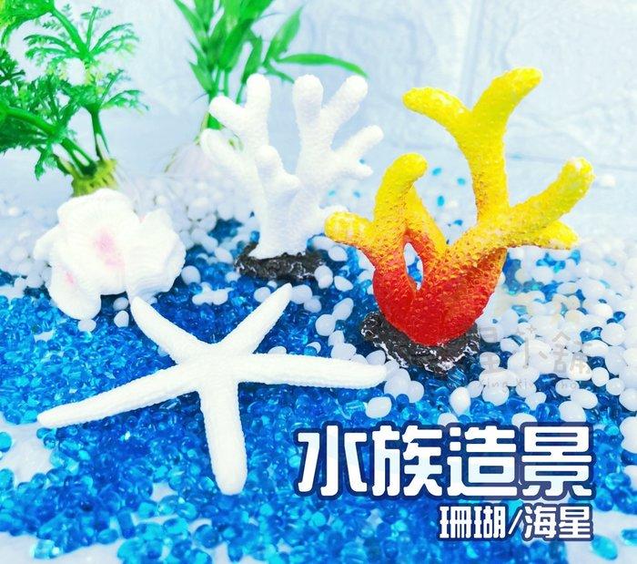 台灣出貨 水族造景珊瑚海星 景觀 水族裝飾 裝飾珊瑚 魚缸擺件 魚缸造景