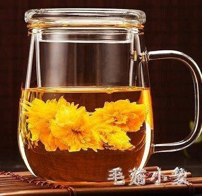 ZIHOPE 泡茶杯帶把耐熱玻璃杯花茶杯水杯帶蓋家用茶水分離杯大容量杯子ZI812