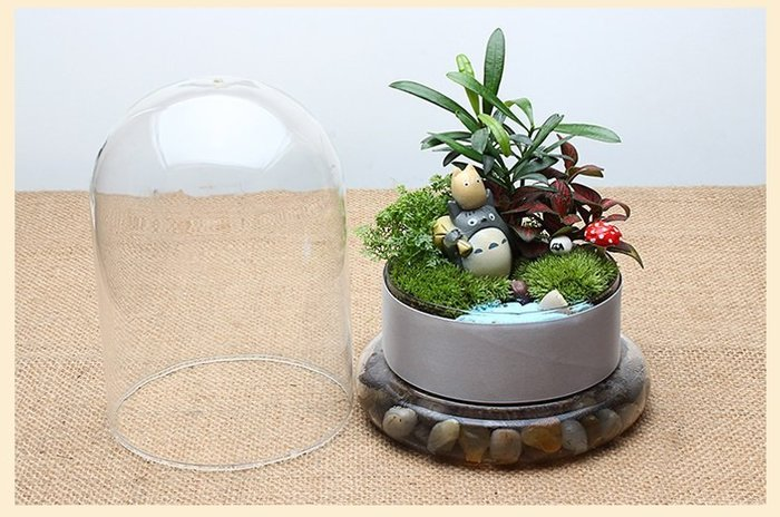 AS-11 園藝 花盆花器 景觀瓶 DIY苔蘚微景觀生態瓶 小品盆栽 花苗 花樹 多肉植物 仙人掌 迷你盆栽