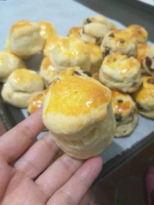 台南[鳳梨鑫]熱門商品(3包入):鮮奶比司吉 有原味和莓果兩種口味,莓果口味內含葡萄乾+蔓越莓兩種莓果在裡面,適合代替正餐麵包喔