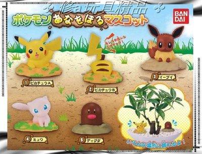 ✤ 修a玩具精品 ✤ ☾現貨扭蛋☽ 日本 正版 寶可夢 神奇寶貝 挖洞篇 全5款 優惠特價中