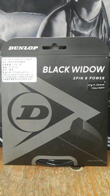 總統網球(自取可刷國旅卡)Dunlop black widow 16 17 12m 德國製 七角 硬線 網球線