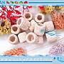 【~魚店亂亂賣~】LUANFISHOP生物科技高效率M號小型精密陶瓷環8顆(散裝)培菌過濾濾材