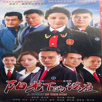 陽光下的法庭 / 顏丙燕 何冰 / 懸疑警匪電視劇 DVD碟片光盤歡 精美盒裝