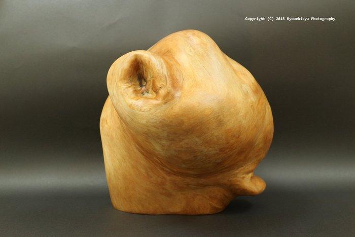 黃檜瘤 原木 高27 x 寬25cm  ( 可雕塑其他造型或刻繪山水畫 )