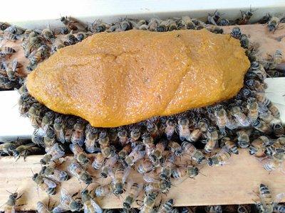 養蜂工具 蜂糧 花粉餅 繁蜂必備