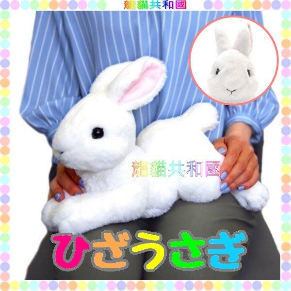 ※龍貓共和國※日本正版《超療癒 仿真擬真 小白兔 兔子 兔寶寶 絨毛娃娃 布偶玩偶37公分白色》生日情人聖誕節禮物