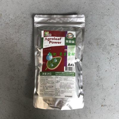 【肥肥】(比利時) ICL肥料大廠 葉霸磷( 12-52-5+TE ) 1kg高純度原料,可促進開根、改善落花落果。