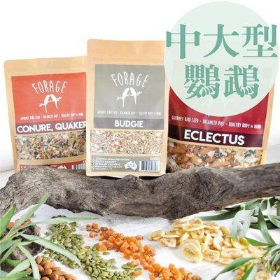 新包裝《寵物鳥世界》澳洲FORAGE佛特吉 寵物鳥專用飼料500g-巴丹/折衷/灰鸚亞馬遜|鸚鵡飼料 豪華營養日糧