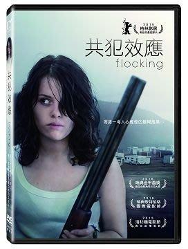<<影音風暴>>(全新電影17073)共犯效應  DVD  全110分鐘(下標即賣)48