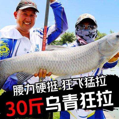 魚竿手竿超輕超硬暴力19調五大品牌臺釣竿