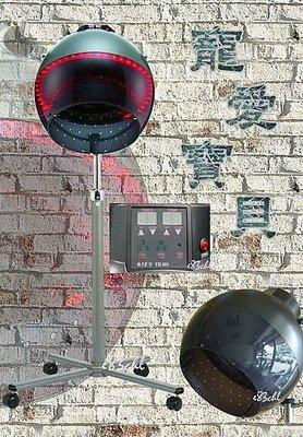 寵愛寶貝~ 雅芳牌 YH-803S ET立式微電腦蜂巢式多功能護髮吹風機 / 燙髮機 (免運費)