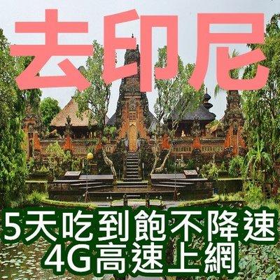 【聯網走動】【印尼5天真心無限吃到飽不降速高速流量】峇里島/上網卡