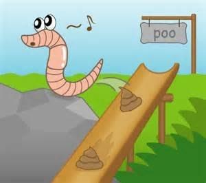 活體歐洲紅蚯蚓(太平2號)100公克60元
