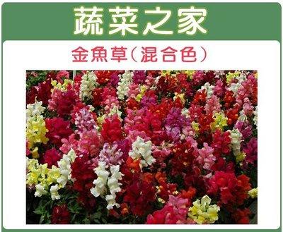 全館滿799免運【蔬菜之家00H14】...