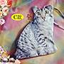 【懶的盤點~隨便賣】 819-71 泰國 彷真貓咪立體造型喵星人 日本原宿卡通手拿包 (5款) 特↘180 現貨~當天寄